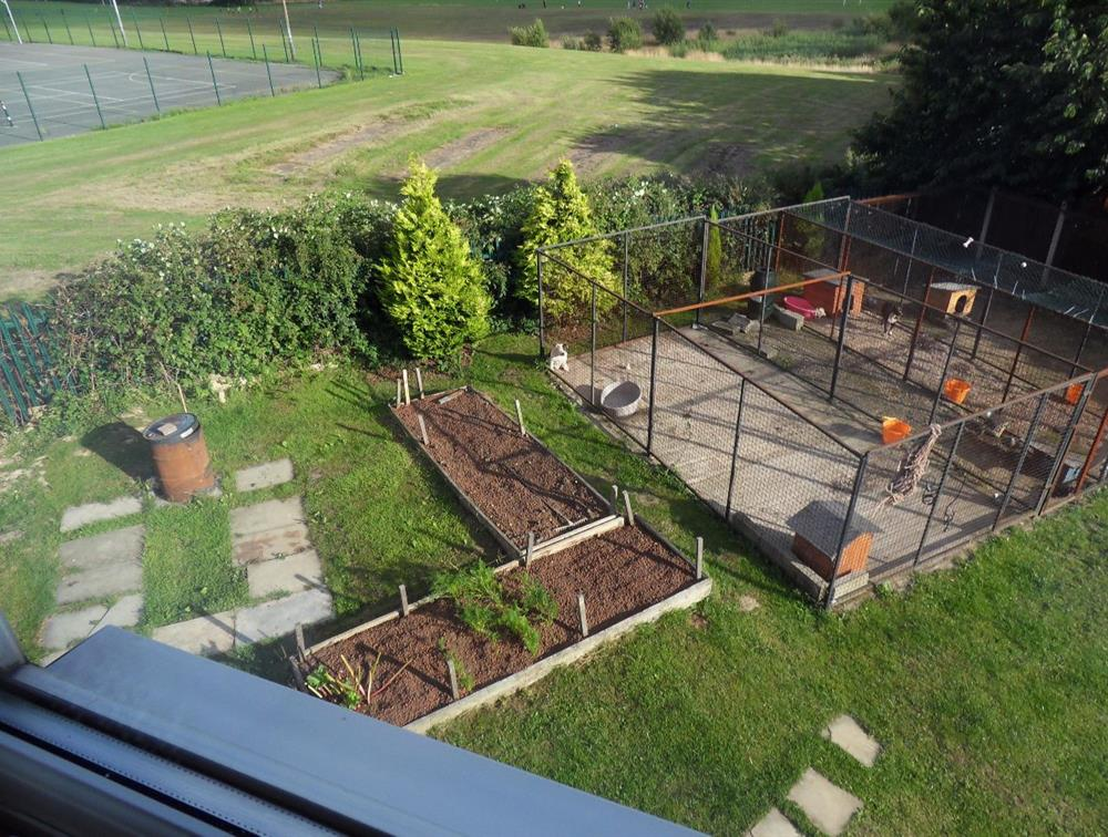 View onto part of the garden from the upstairs window.