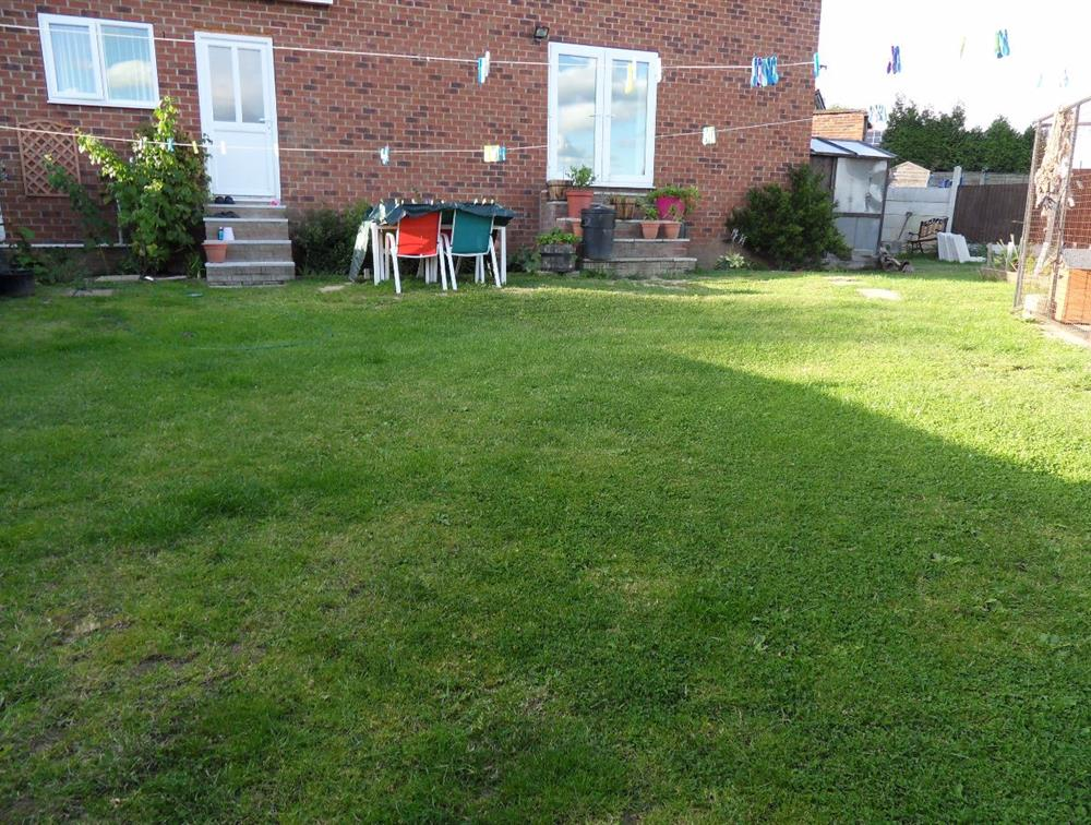 Just part of the back garden grassy area